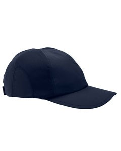 999590ab32546 Champion Moisture-Wicking Mesh Cap- CLEARANCE