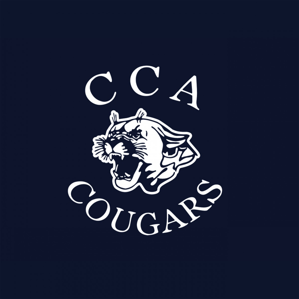 6567cbc36 Calvary Chapel Academy Big Accessories Old School Baseball Cap With ...