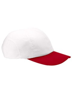 Champion Moisture-Wicking Mesh Cap- CLEARANCE